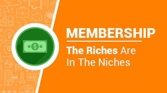 the riches are in the niches