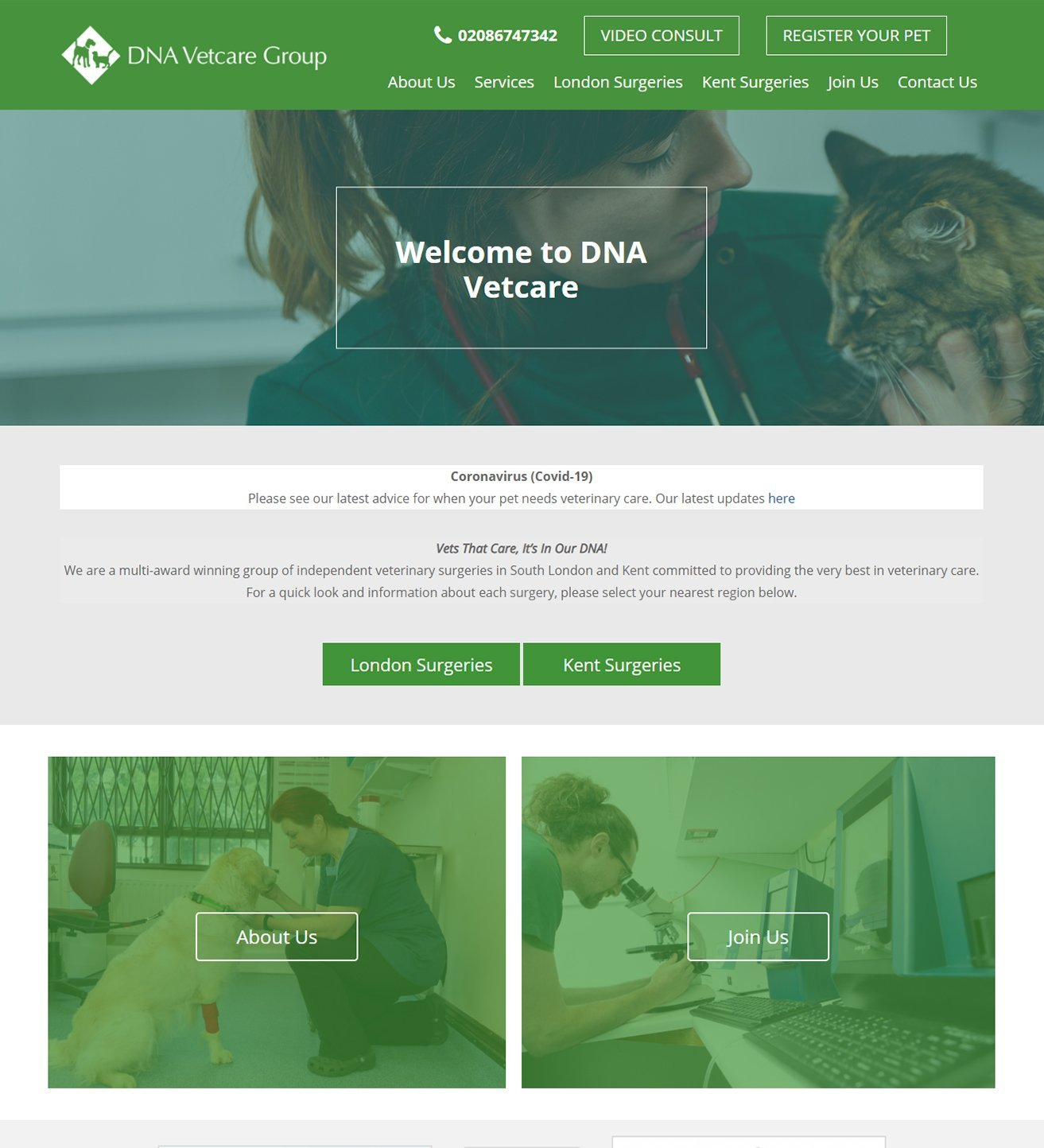 dna vetcare group, websites for vets